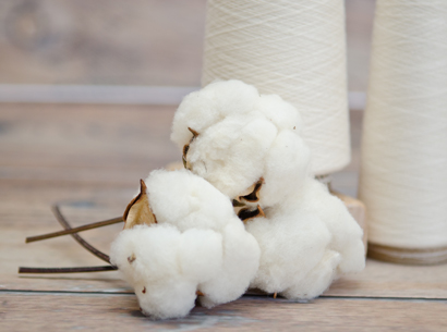 Bjorn-Borg-member-of-BCI-Better-Cotton-Initiative